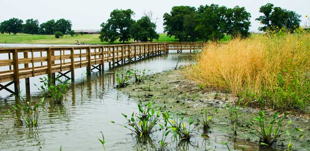 ManMade Wetlands Control Nitrates