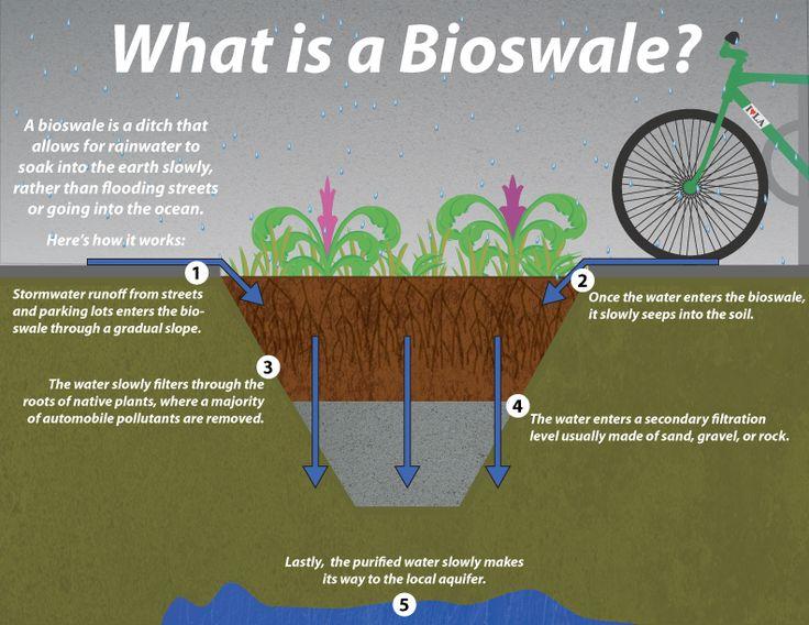 biowsale